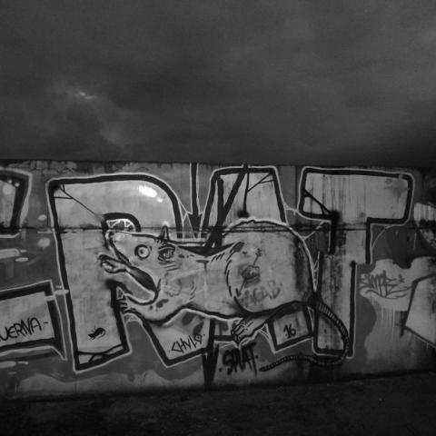 Ratsplat | Fotografía cortesía de Ratsplat